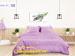 Bộ Chăn Ga MARRIGATE TENCEL S36- Phù Dung